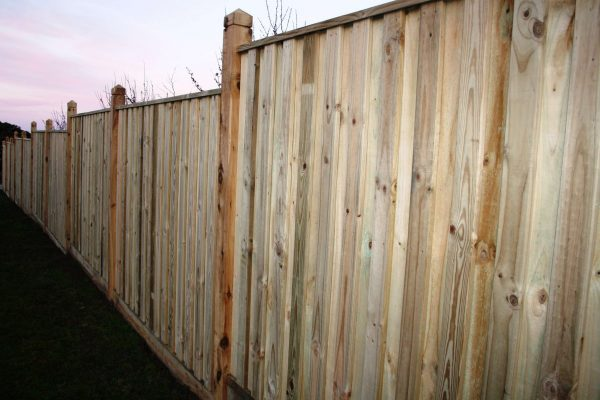 Treated Pine Paling and Capping using 125/125 Cypress Posts