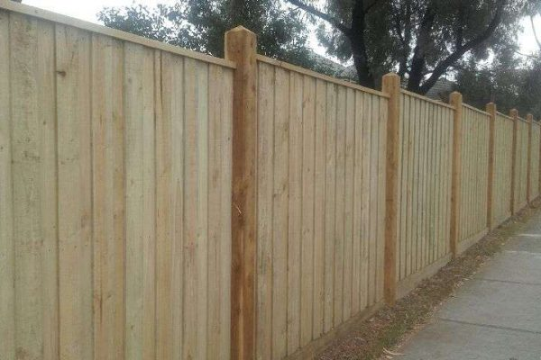 Treated Pine paling with Exposed 125/125 Posts and Capping